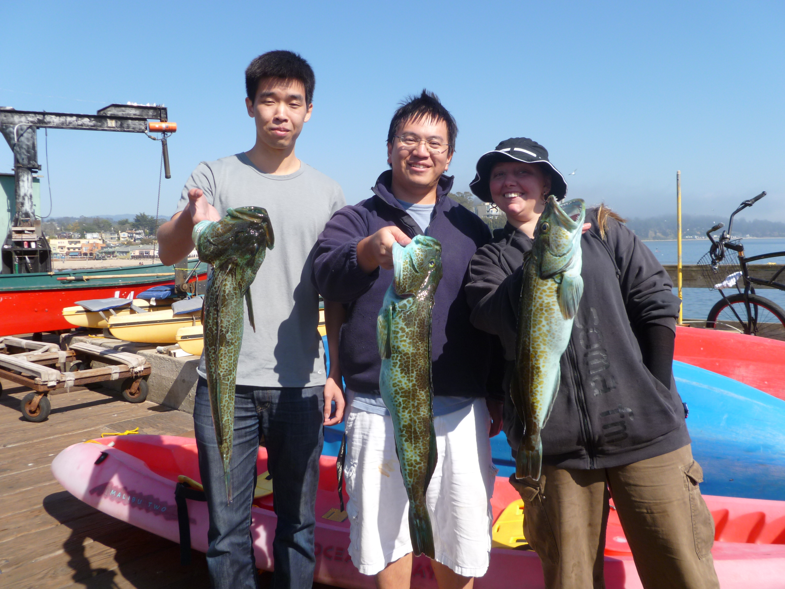 Light tackle fishing archives fishermen never lie for Capitola fishing report